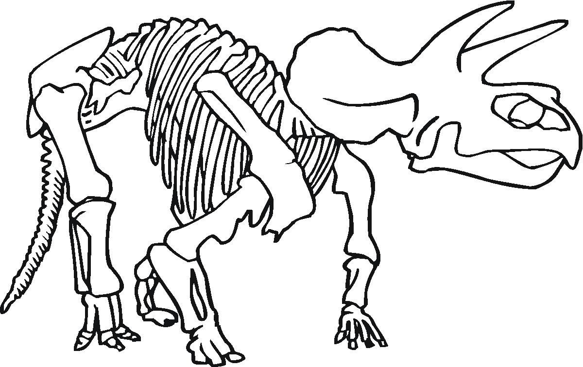 Dinosaur Bones Coloring Pages Coloring Pages Pictures