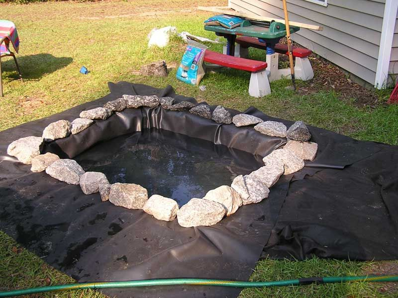 Turtle Ponds for Backyard | Outdoor Turtle Pond version 1.0 - Turtle Ponds For Backyard Outdoor Turtle Pond Version 1.0 Earthy