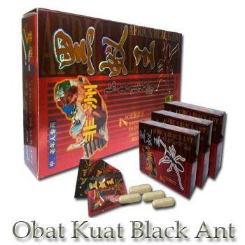 black ant afrika obat kuat herbal semut hitam obat kuat tahan