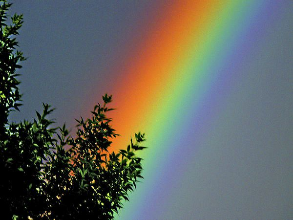 ✮ Brilliant Rainbow