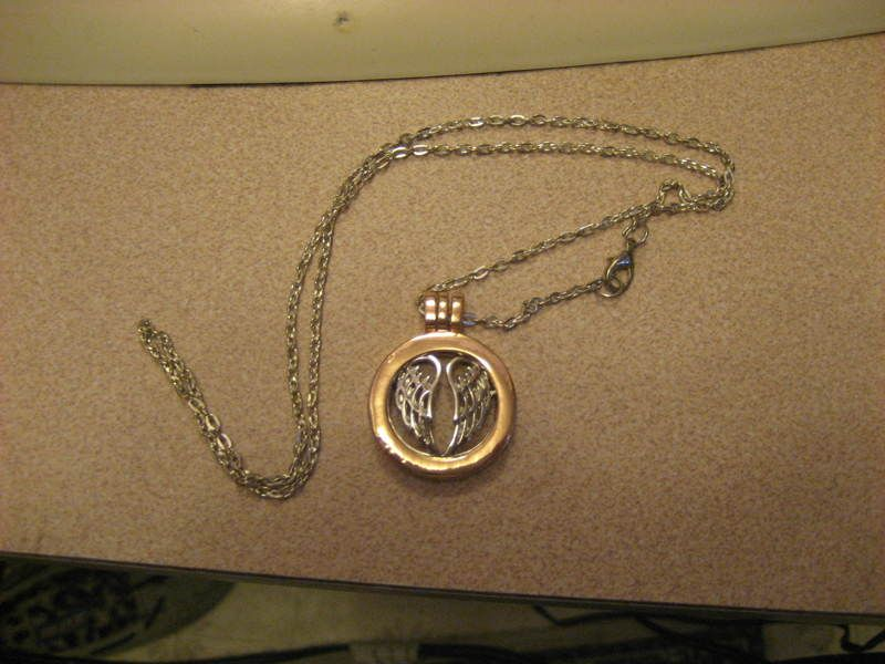 Necklace in remembrance of your beloved pet (With images