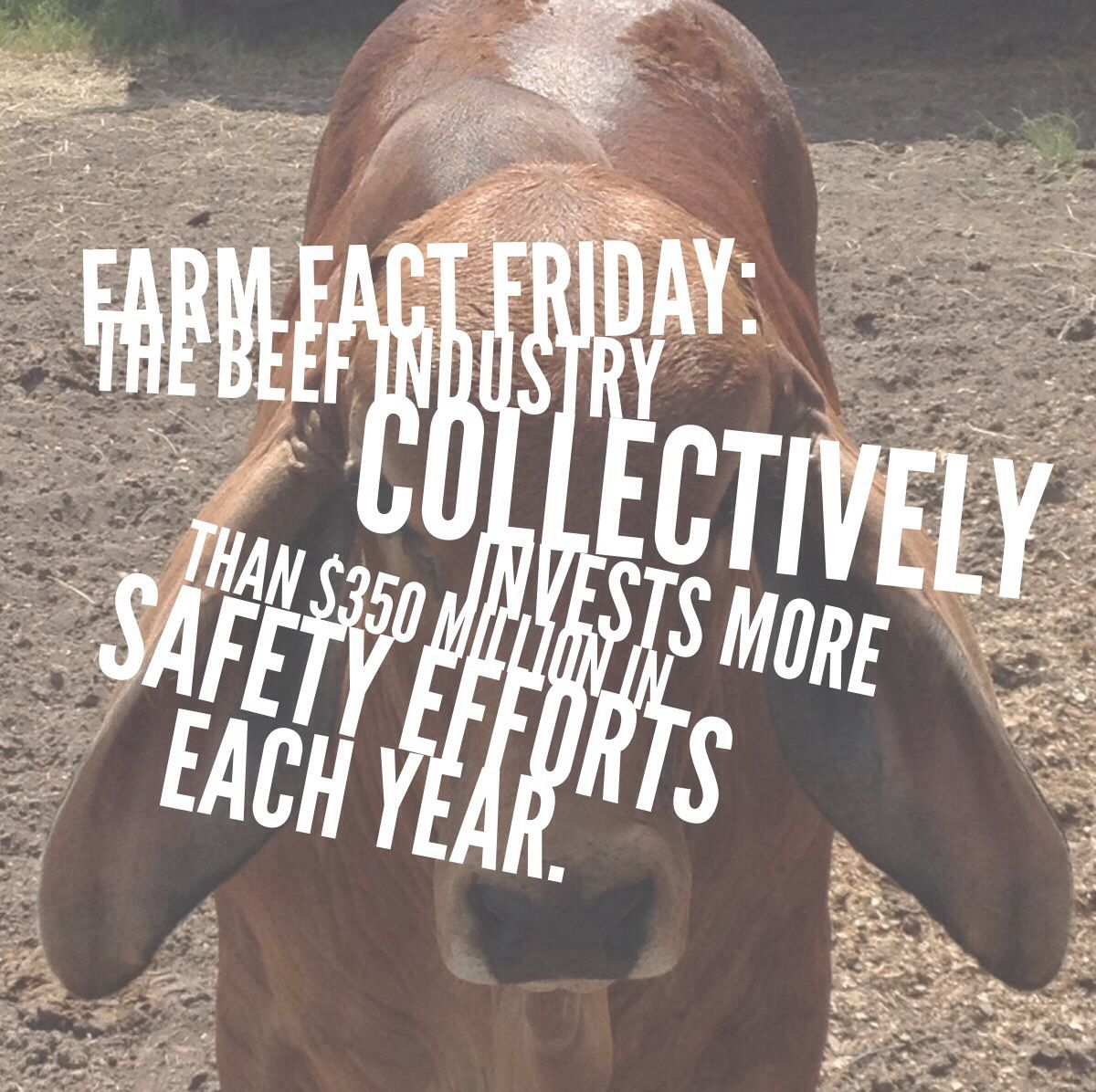 Farm Fact Friday