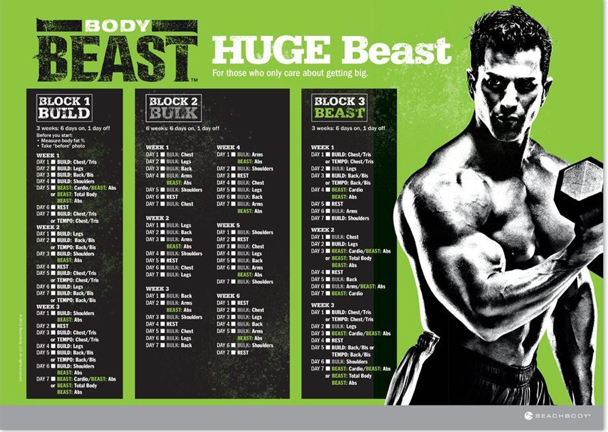 Body Beast Workout Schedule Downloads Get Them