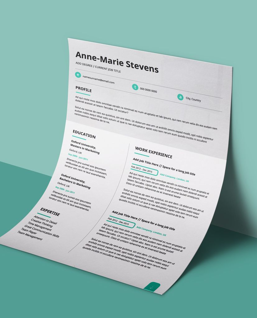 Editable Resume Template PDF Subtle Cyan Modern 2 Page