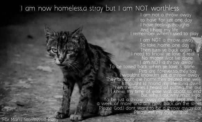 This broke my heart..Please repin and share...No animal is worthless..they are the gift of family you give yourself.