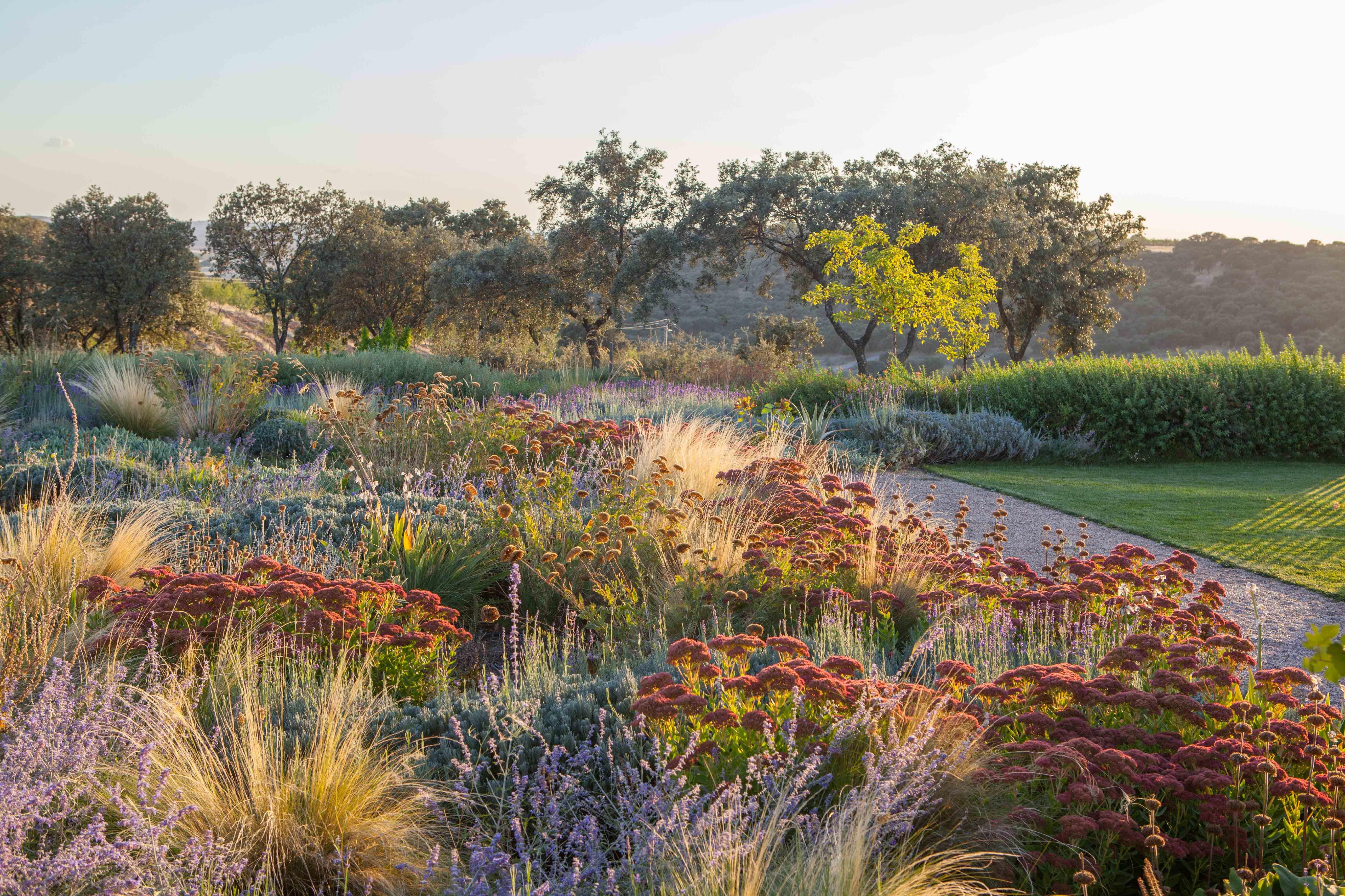 AUTUMN .Fernando Martos garden design   planting ☐ design ...