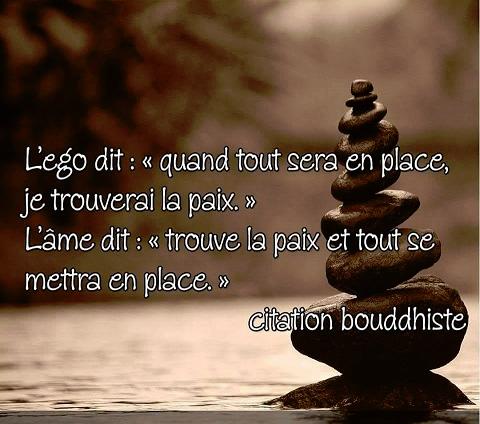 Image De Citation Proverbe La Vie Est Trop Courte Citation