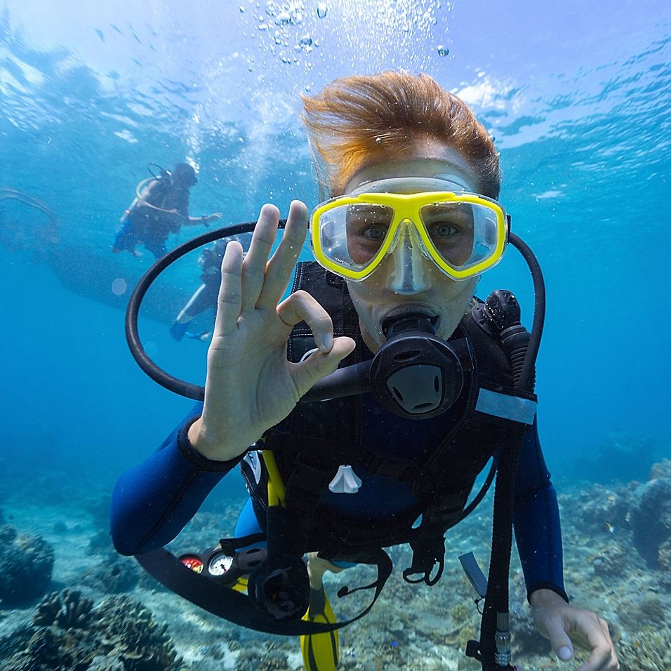 Dive Shop Tampa Fl