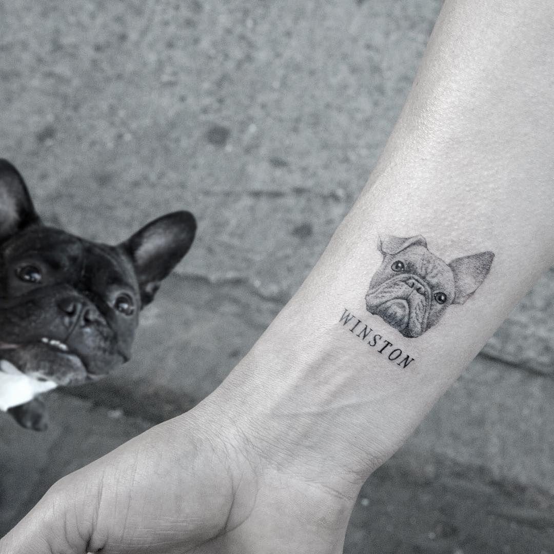 The secret life of pets tattoo mr k tats t is for for Tattoo secret life of pets