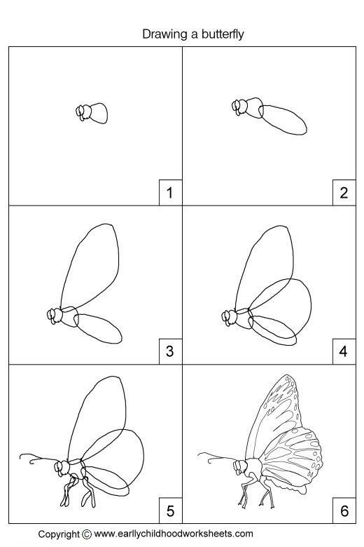 Drawing A Butterfly Jpg 520 780 With Images Easy Drawings