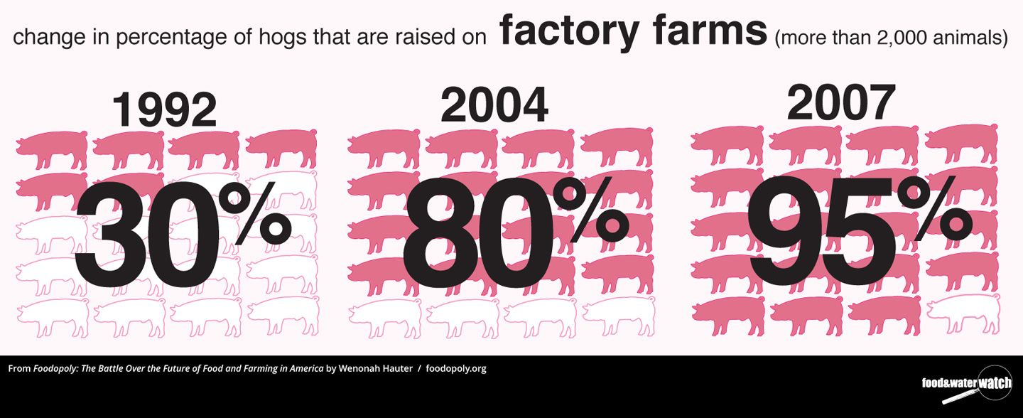 best images about stop factory farms chipotle 17 best images about stop factory farms chipotle expectation reality and factories