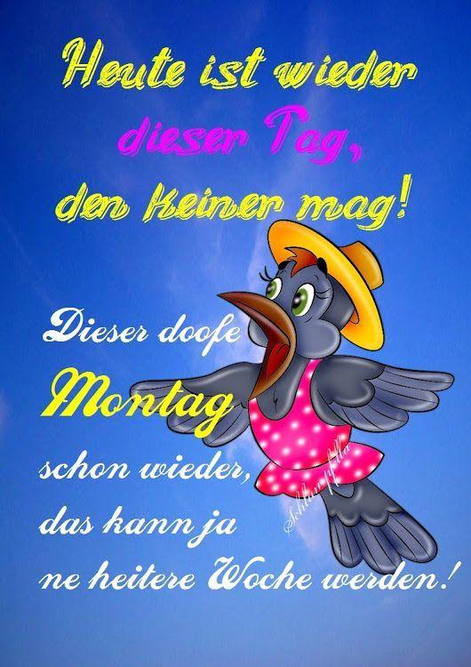 Guten Morgen Und Einen Schönen Montag