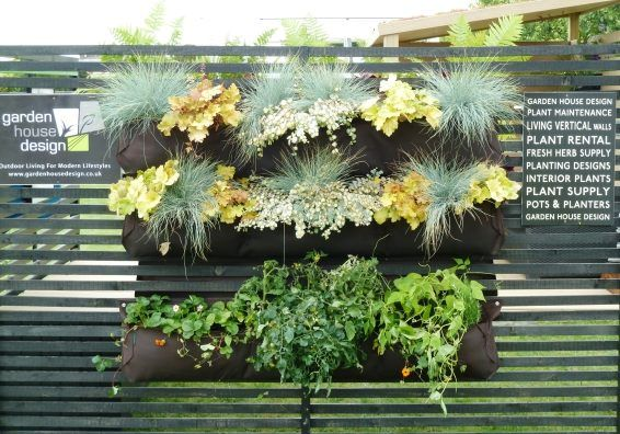Living Wall Planters On A Trellis Wall