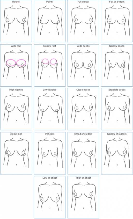 Boob sizes nipple types