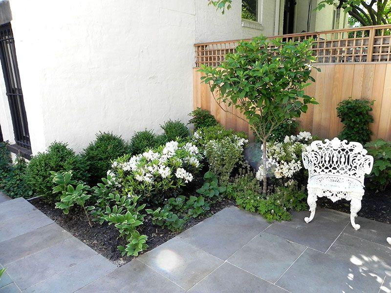 Fence In 48st Street Garden In Brooklyn Garden Design By The Artist Adorable Garden Design Brooklyn Image