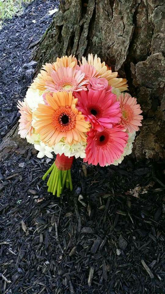 Coral Gerbera Daisy Blush Custom Weddings Blush Bouquet Bouquet