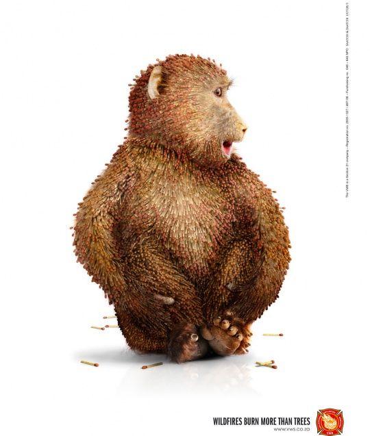Animals in Print Ads | Cruzine