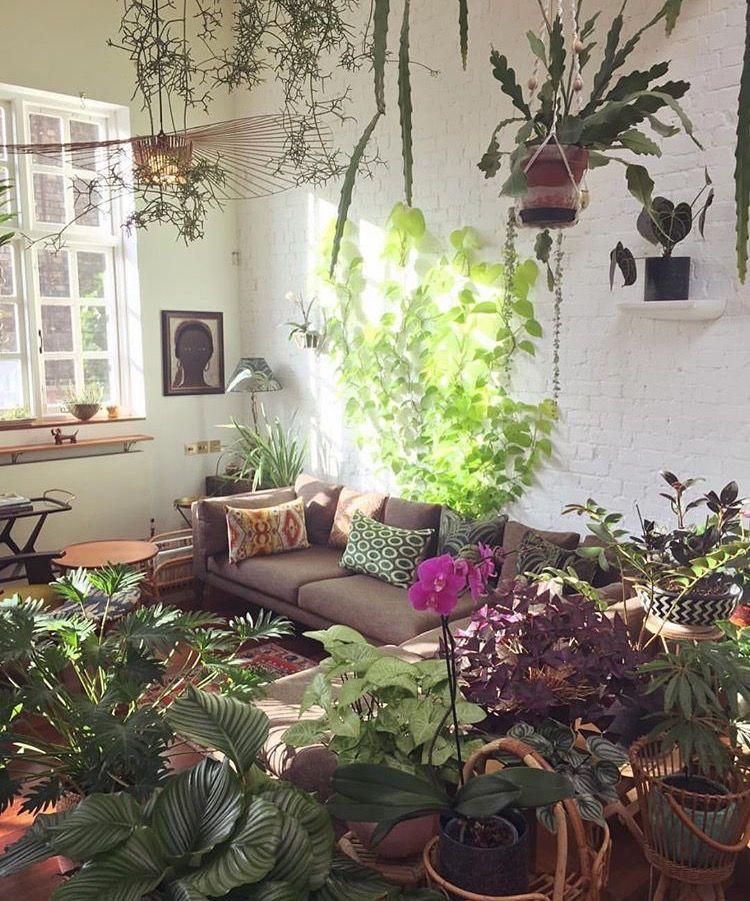 Pin de Madeline Ogle en greenery Pinterest Terrazas, Plantas y - decoracion de terrazas con plantas