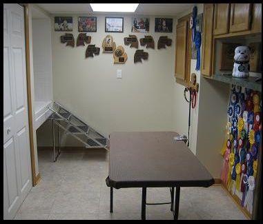 Pet Grooming Room Home Remodeling Michigan Basement Kitchen