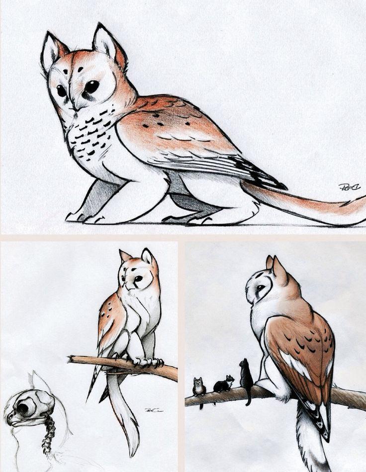Owl Griffin They Are So Cute Edited By Kira Claypoole Example For Contest Mificheskie Sushestva Risunki Zhivotnyh Eskizy Zhivotnyh