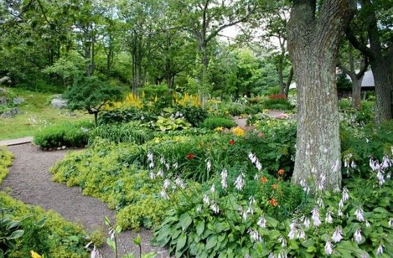 Several Refreshing Ideas for Rearranging Your Garden