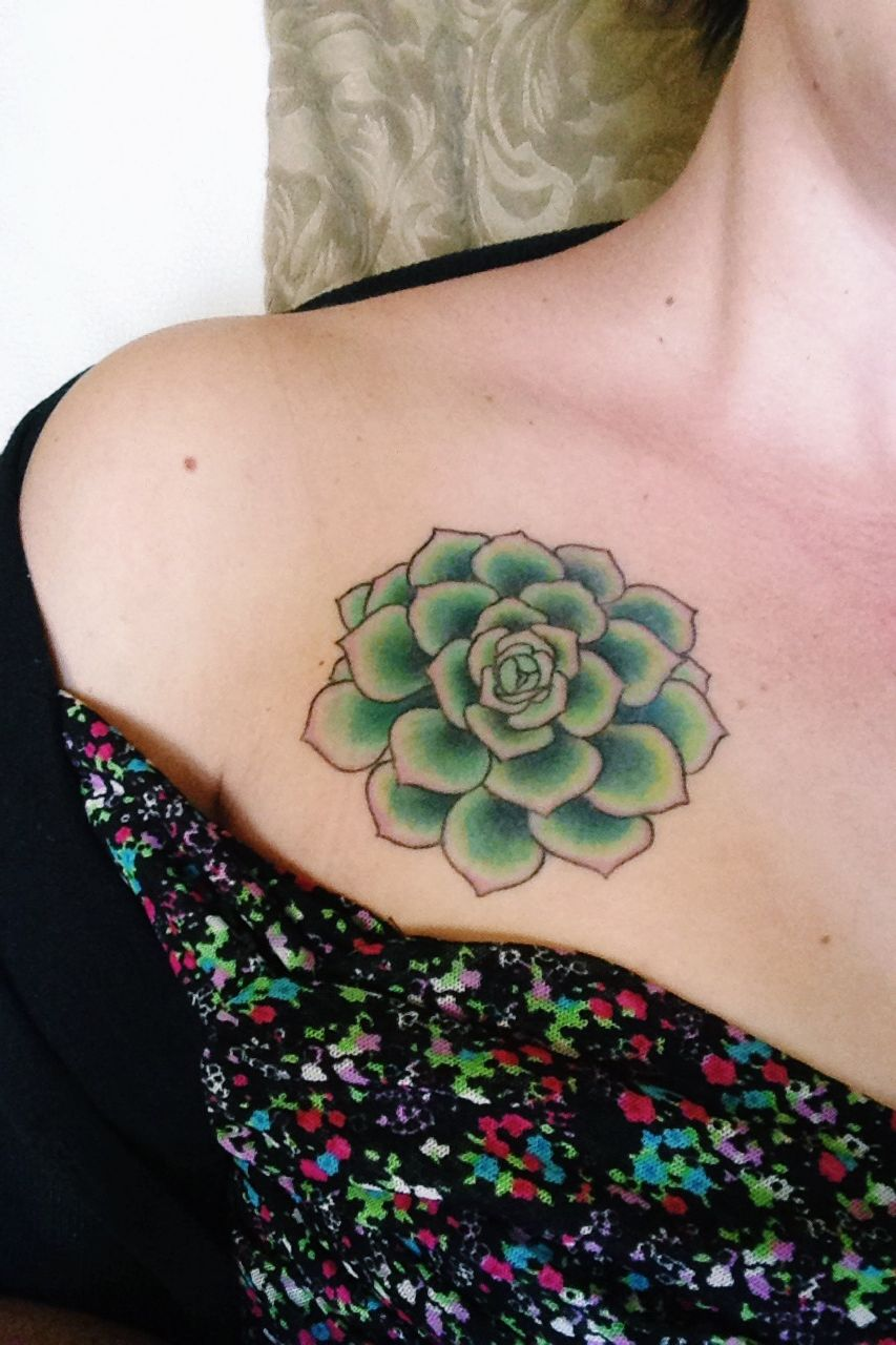 Chest & Shoulder Hen Succulent Tattoo. By Ashley Wollaston
