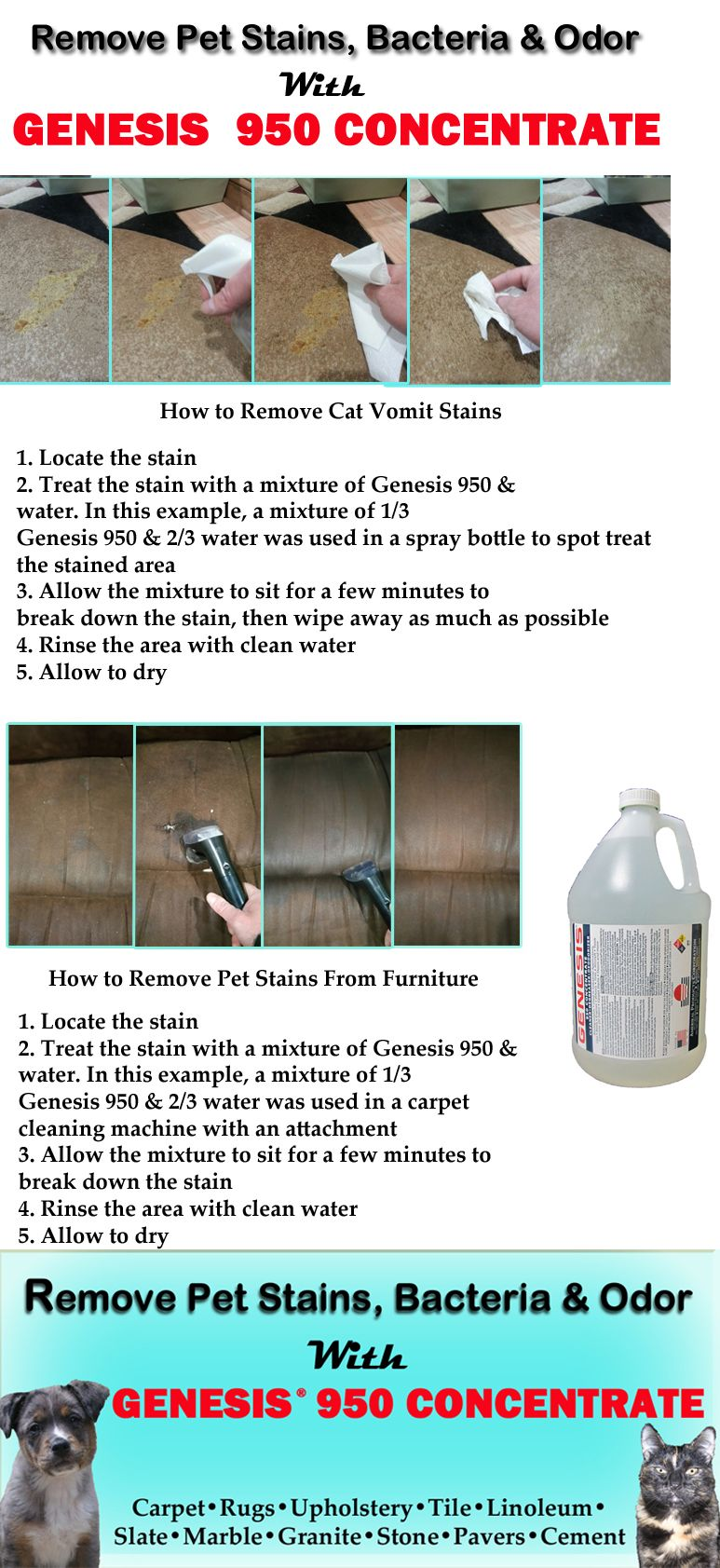 Genesis 950 Is A Green All Purpose Cleaner That Safe For You Your Family And Pets Step By Instructions On How To