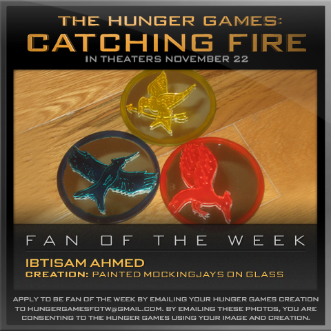 Congratulations Ibtisam Ahmed! His remarkable, hand painted set of Mockingjays on glass earned him a spot as our Hunger Games Fan of the Week!