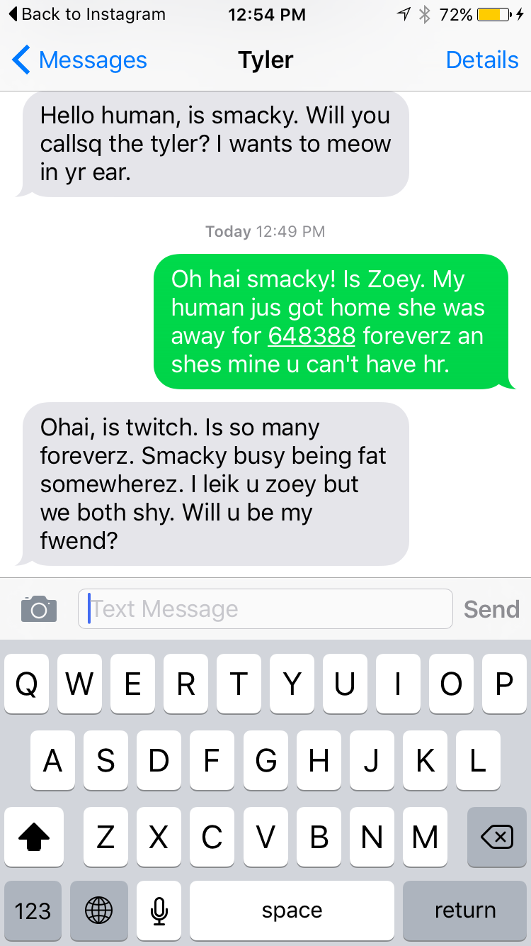 A text exchange between my sister's cats and mine. We're such nerds.