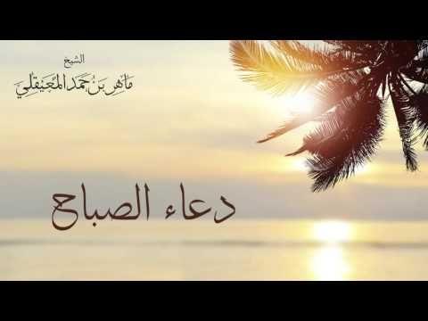 الشيخ ماهر المعيقلي دعاء الصباح Sheikh Maher Al Muaiqly Duaa Al Sabah Youtube Beautiful Sea Creatures Quran Youtube