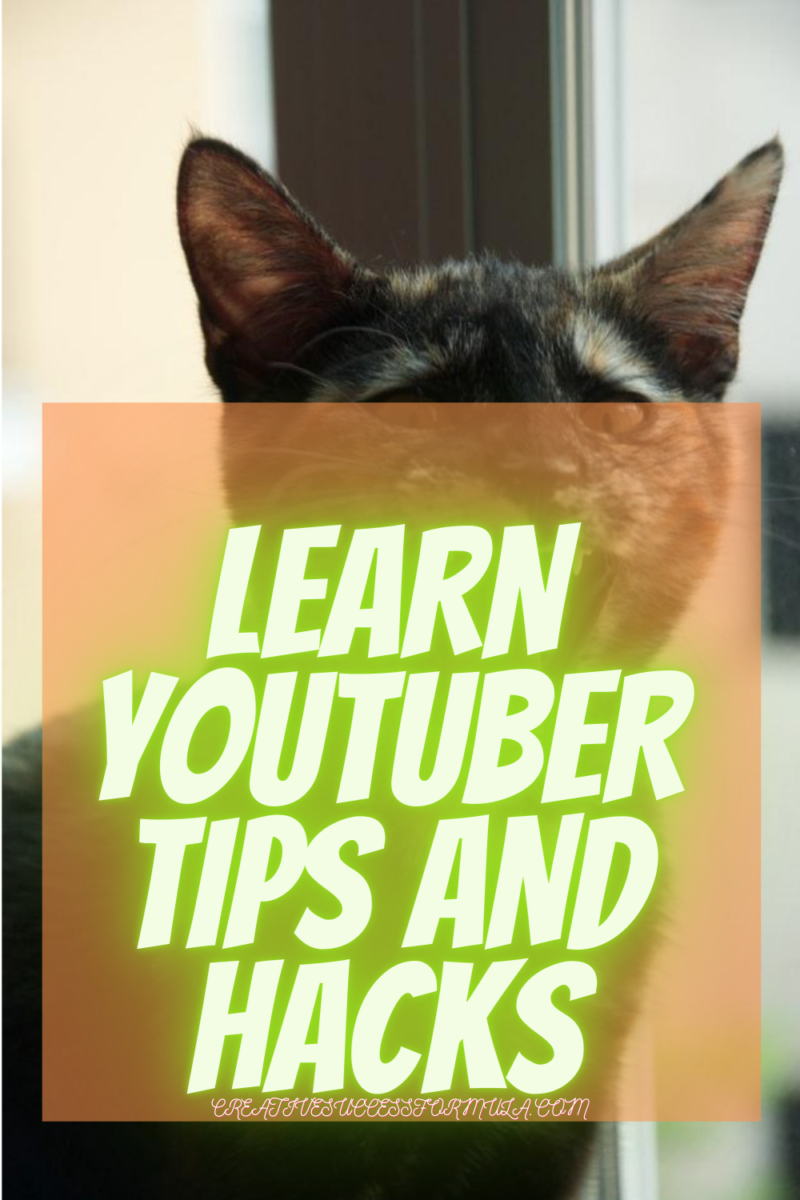 How Much Youtube Pays For 1000 Views? Learn Tips, Tricks, Secret Hacks - Creative Success Formula