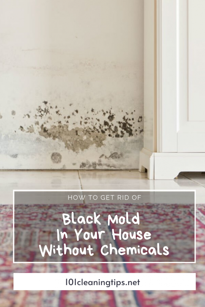 7a2f3261f1c3138772fe4d08c2cd37af - How To Get Rid Of The Mold In The House