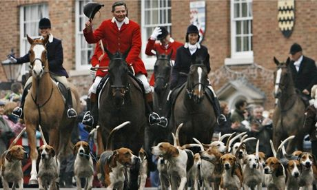 Hunting ban in danger of being undermined, say animal welfare groups