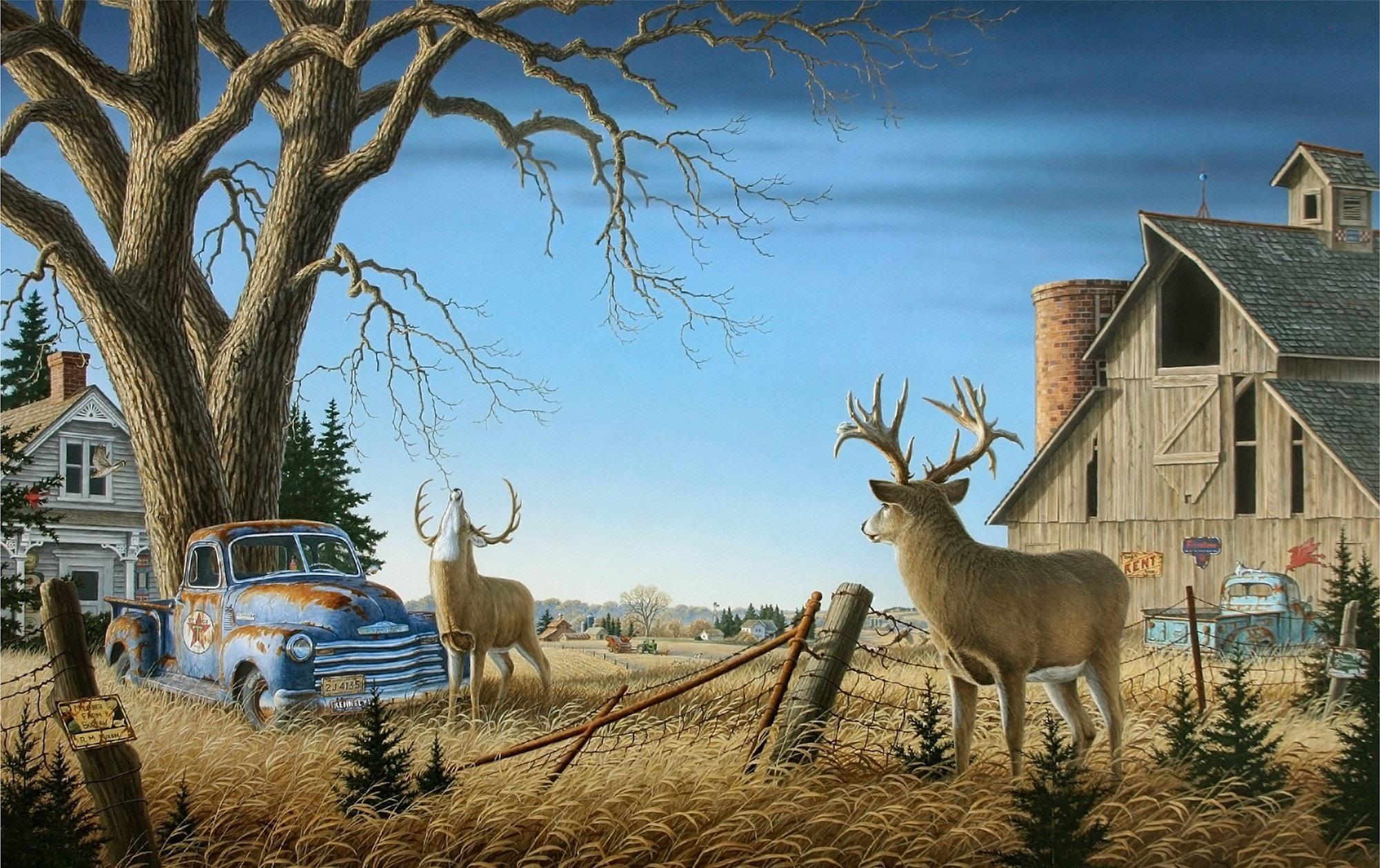 Camouflage Whitetail Deer Taxidermy Shoulder Mount | Deer ... |Wide Deer Wildlife