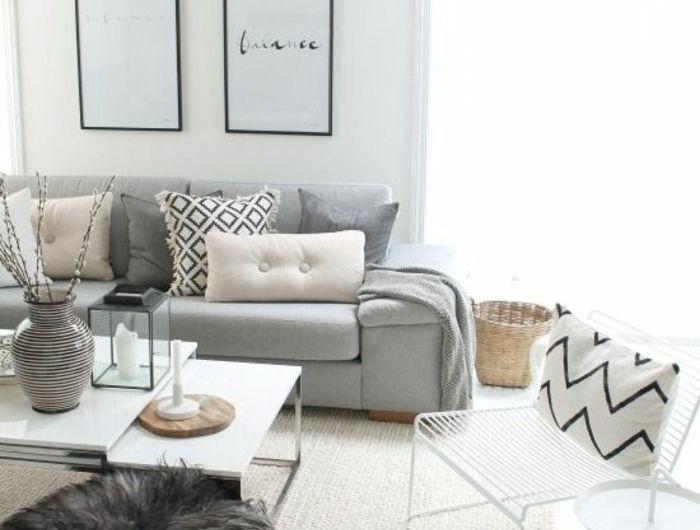 Quelle Sofa quelle couleur pour un salon 80 idées en photos