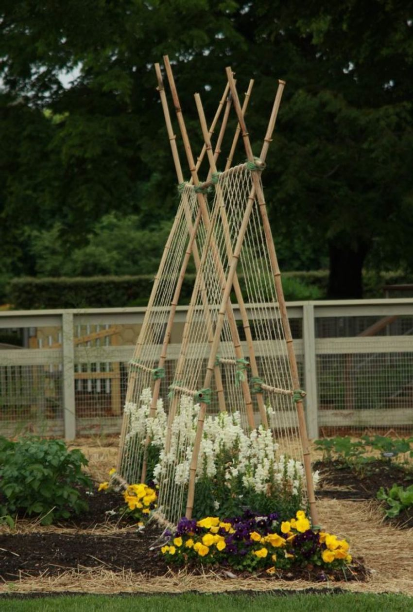 Veggie trellising ideas from Longwood Gardens - FineGardening