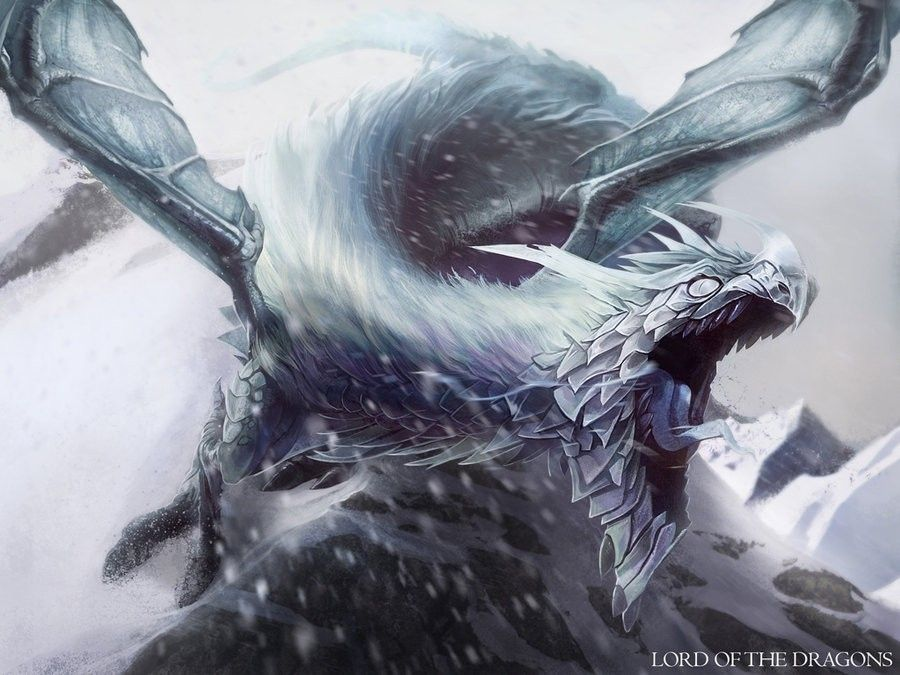 hd pics drawings of ice dragons wallpaper i luv dragons