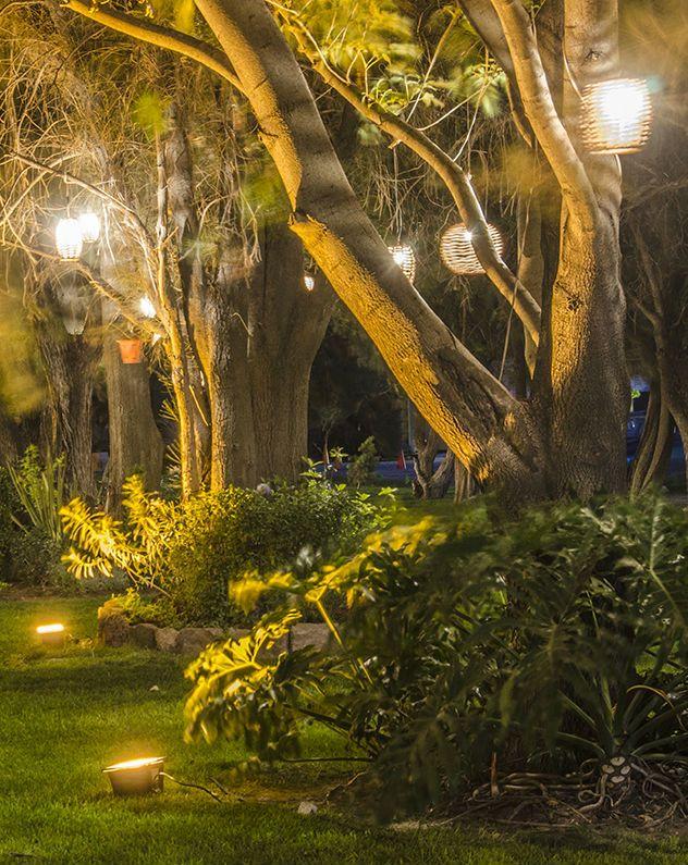 Iluminación para boda en jardín Lighting Pinterest Boda en