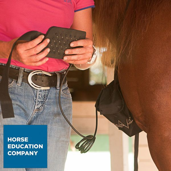 Red Light & Infared Therapy System for Horses