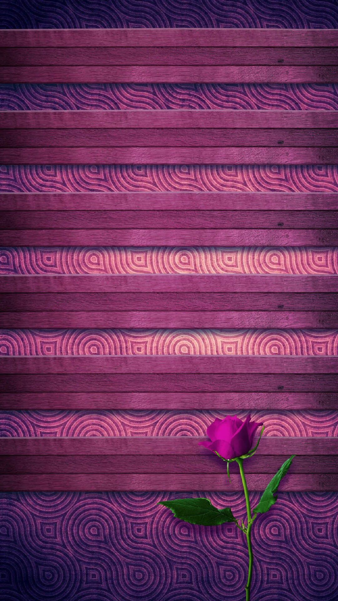 Tap And Get The Free App Shelves Beautiful Rose Purple Lovely Flowers Romantic Pattern Iphone 6 Plus Wallpaper Wallpaper Iphone Summer Pink Wallpaper Iphone
