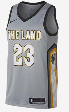 c48c58538b1 Men 23 Lebron James the Land Jersey Gray Cleveland Cavaliers City Edition  Fanatics