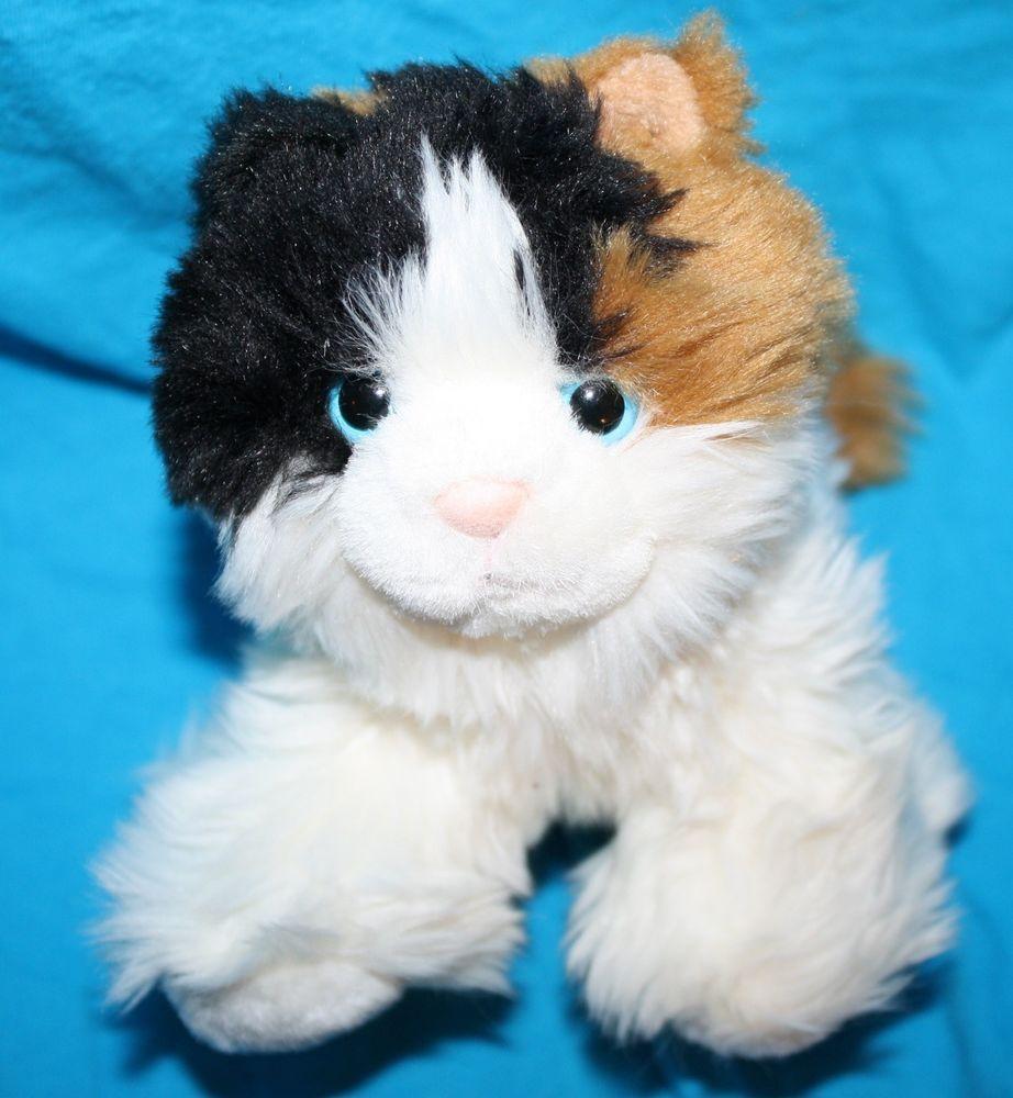 Commonwealth Plush Cat Calico Orange Black White Blue Eye 7