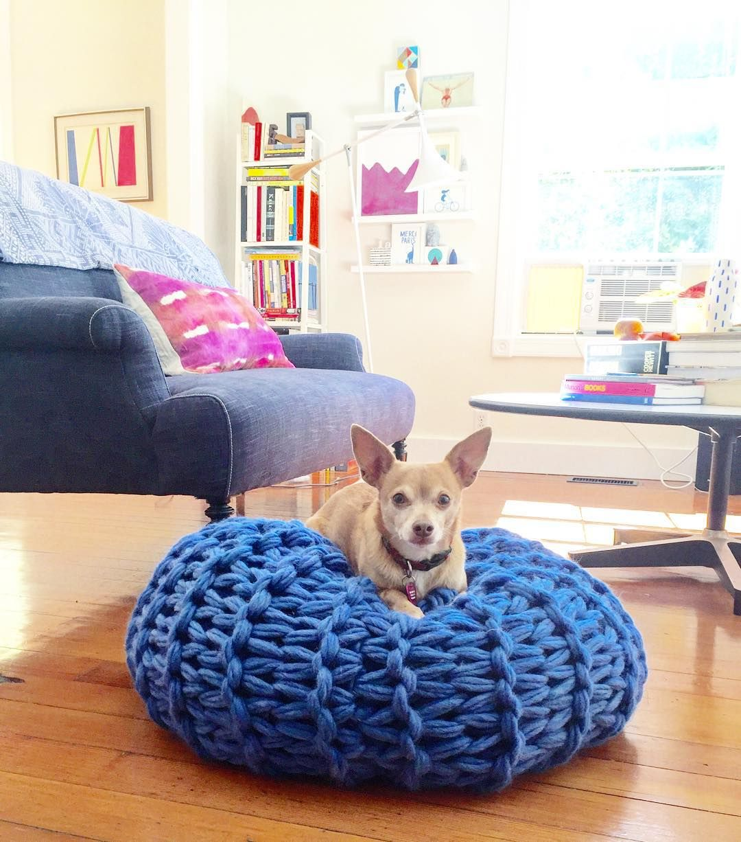 Wilfredo loves our new arm-knitted pouf! // today on the blog: an interview with the multi-talented @flaxandtwine about her new book Knitting Without Needles // Anne's new book is rich with easy & gorgeous hand & arm knitting projects // tons of pictures & links (along with my interview with Anne) on my blog today (link in profile)  by lisacongdon