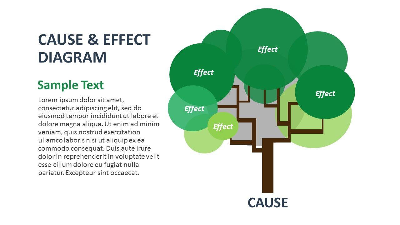 Slide2 Tree Diagram Powerpoint Templates Powerpoint