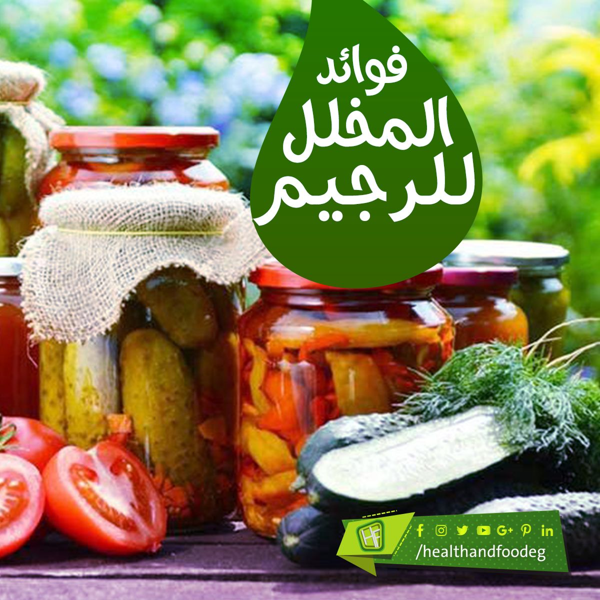 فوائد المخلل للرجيم Pickles Cucumber Food