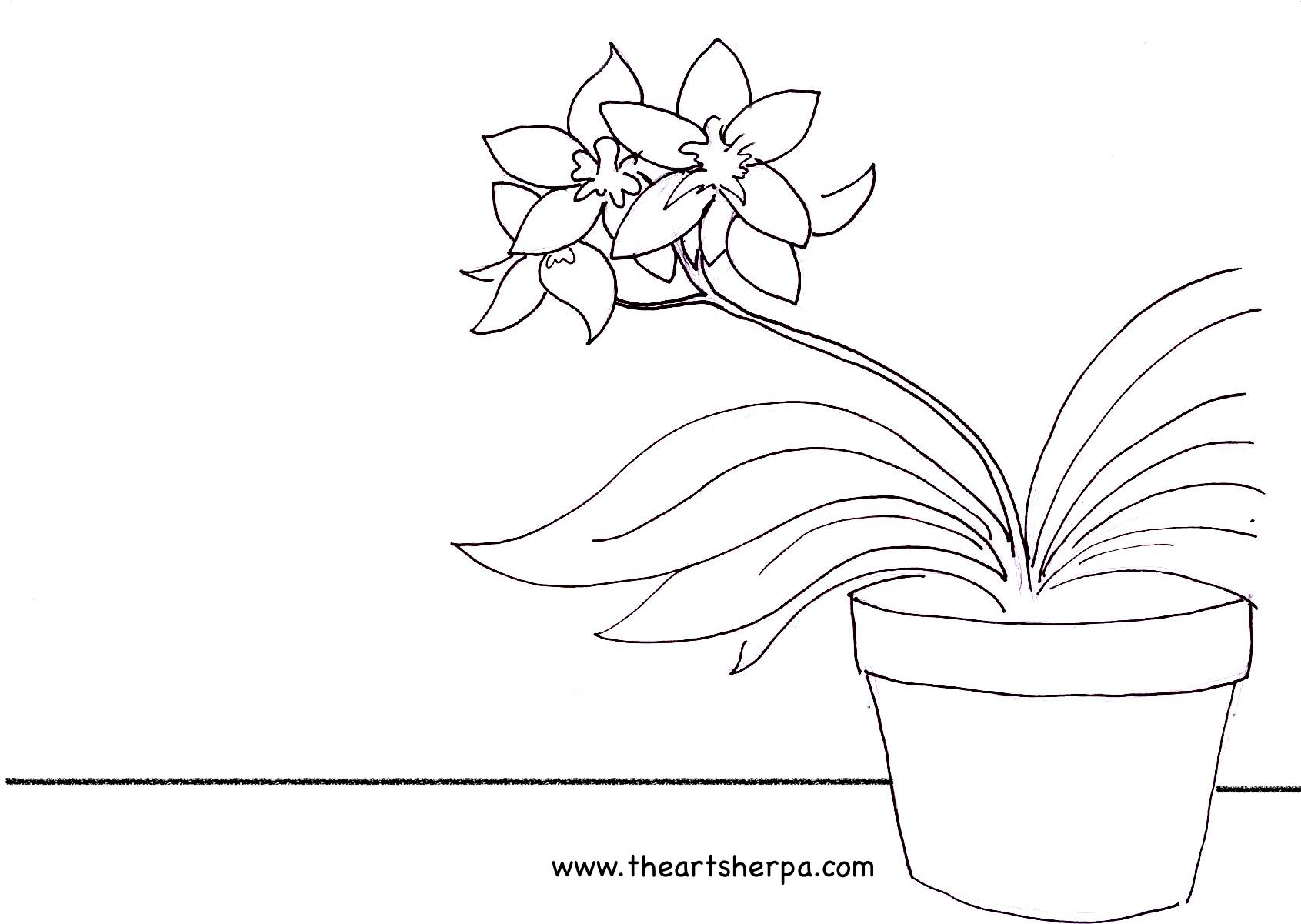 Traceable for the Orchid As seem on youtube with the art