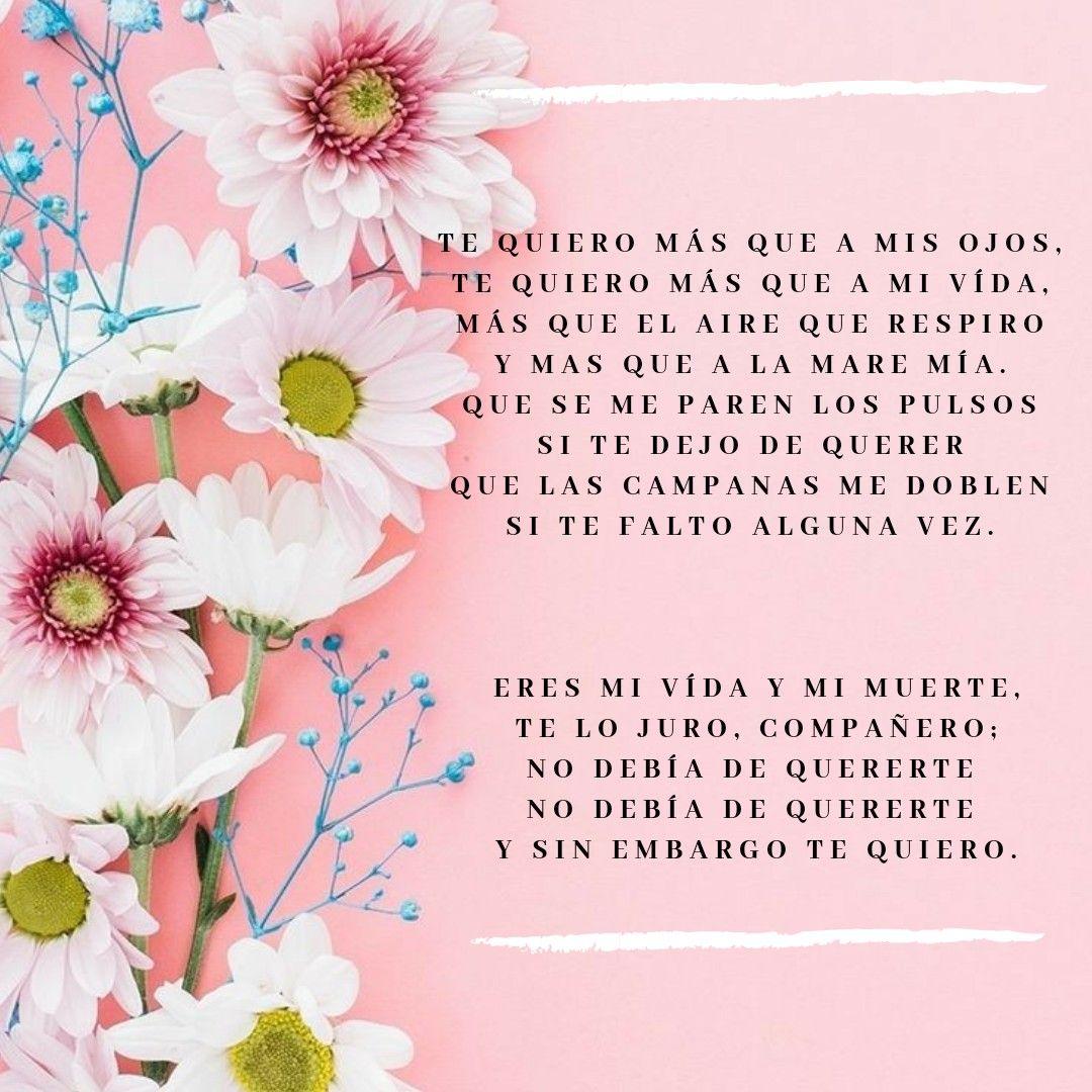 Y Sin Embargo Te Quiero Joaquín Sabina Book Cover It Works
