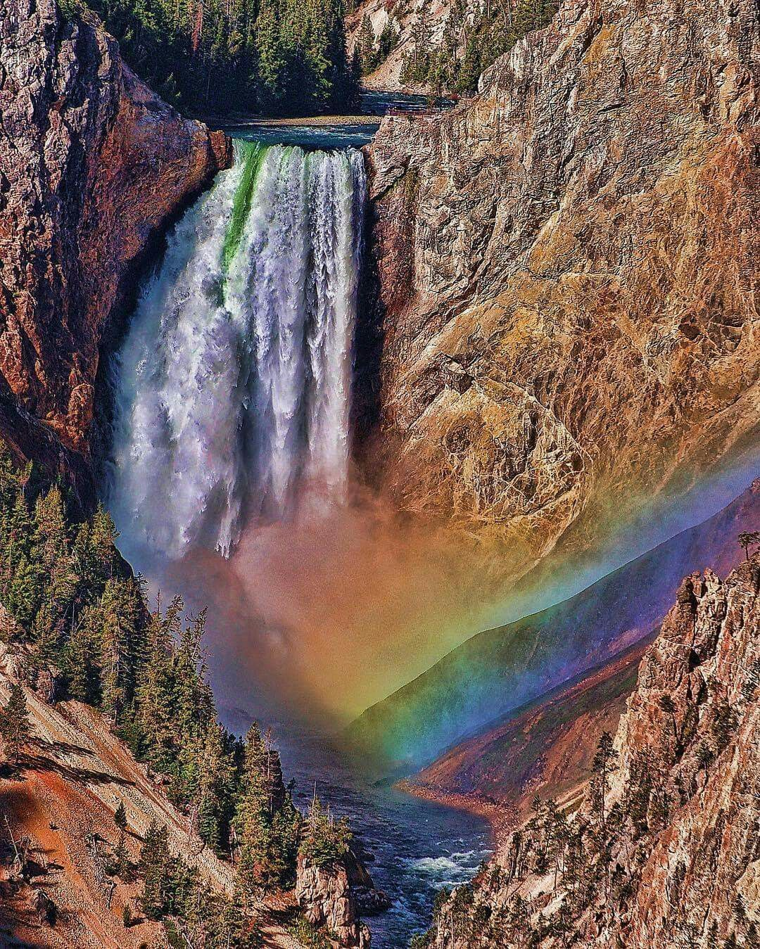 Artist Point in Yellowstone National Park comes by its
