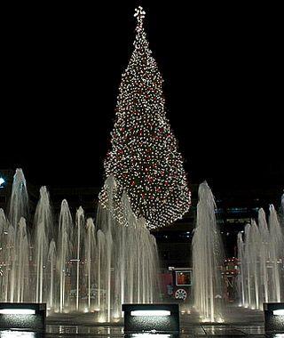America S Tallest Christmas Trees White House Christmas Tree White House Christmas Tall Christmas Trees