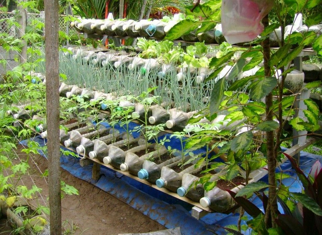 7a382e88190764d99d29993f05947a14 - How To Use Plastic Containers For Gardening